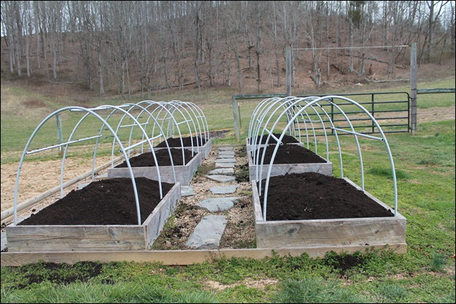 Raised Beds in March