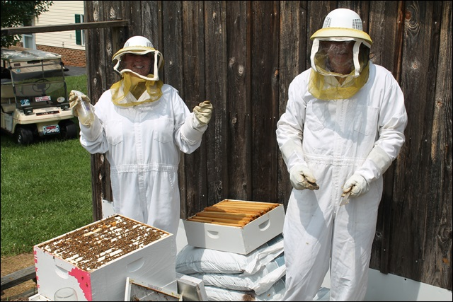 Beekeepers Again!
