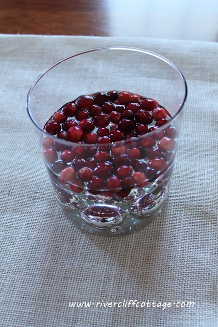 Cranberries in the Vase
