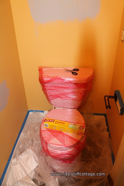 Painting Behind the Commode