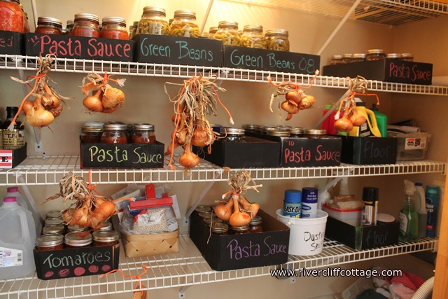 Pantry With Onions