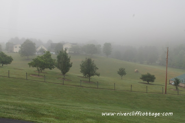 RiverCliff in Fog