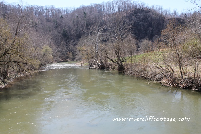 Tressel View River